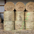Hay bales — Stock Photo #38676503