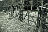старые ворота — Стоковое фото