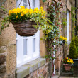 Stock Photo: Hanging baskets