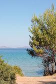 Alonissos seaside — Stock Photo