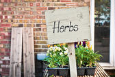 Herbs sale — Stock Photo
