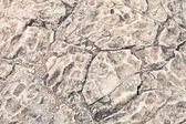 Modello di roccia — Foto Stock