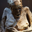 Stock Photo: Guanajuato mummy