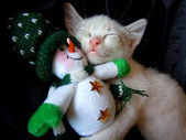 Kitten cuddling with snowman toy — Stock Photo