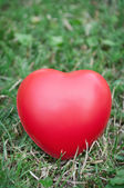 Red heart on grass — Stock fotografie