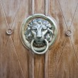 Ancient style carved lion head knocker — Stock Photo