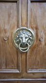 Door with ancient style carved lion head knocker — Stock Photo
