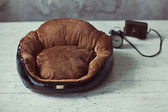 Leather pet place in interior — Stock Photo