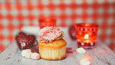 Cupcake on the coloured background — Stock Photo