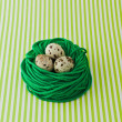 Quail eggs in a nest — Stock Photo