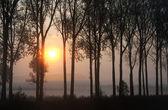Sisli gündoğumu — Stok fotoğraf