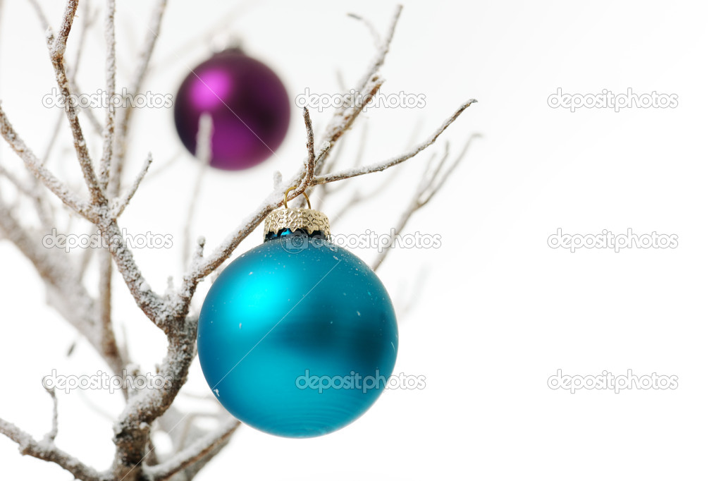 Tho bright baubles on white branch — Stok fotoğraf #14006443