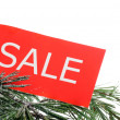 Seasonal sale — Stock Photo #17424615