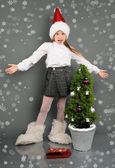 Noel — Stok fotoğraf