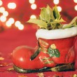 Christmas — Stock Photo #8050246