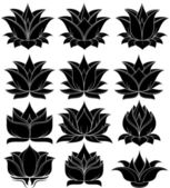 Lotus flower set — Stock Vector