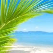 Beautiful tropical beach with palm tree and sand — Stock Photo #12716655