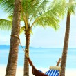 Empty hammock between palm trees — Stock Photo #42865535