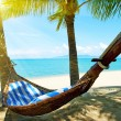 Empty hammock between palm trees on tropical beach — Stock Photo #44273917