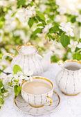 English tea — Stock Photo
