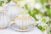 English tea — 图库照片