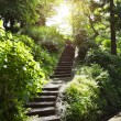 Stone stairs in park — Stock Photo #29238569