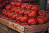 Ttomatoes at market — Stock Photo