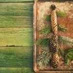 Vintage toned photography of christmas tree — 图库照片