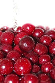 Juicy cherry in water — Stockfoto