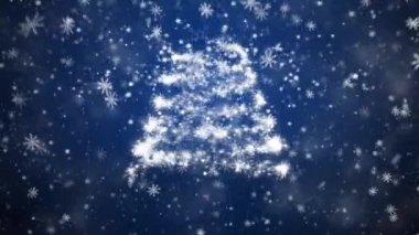 Groeiende nieuwe jaar boom — Stockvideo