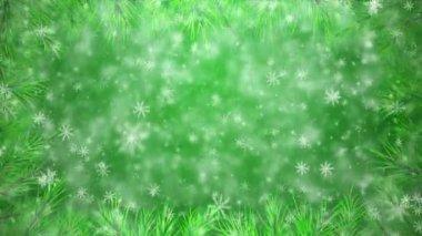 Noel ağacı dalı — Stok video