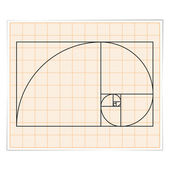 Golden Ratio — Stock Vector
