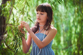 Girl staying near a osier — Foto Stock