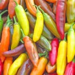 Chilies in Many Different Colors and Shades — Stock Photo #38132217