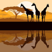 Giraffe family silhouettes in Africa wild nature mountain landsc — Stock Vector
