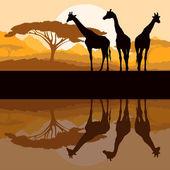 Sagome familiari giraffa in africa natura selvaggia montagna landsc — Vettoriale Stock