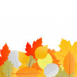Leaves autumn vector background — Stock Vector #13765149