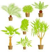 家の植物のベクトルの背景 — ストックベクタ