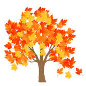 Maple tree autumn leaves background vector — Stock Vector