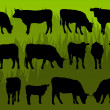 Beef cattle and cow detailed silhouettes illustration — Stock Vector