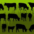 Beef cattle and cow detailed silhouettes illustration - Stock Vector