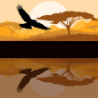 Eagle flying vector background with reflection — Stock Vector #14787033