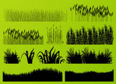 Plants, grass and flowers detailed silhouettes illustration collection background vector — Stock Vector