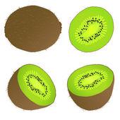 Juicy kiwi fruit vector background — Stock Vector
