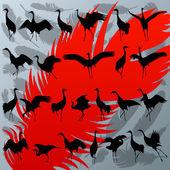 żuraw ptak i piór ilustracja szczegółowa sylwetka zbierać — Wektor stockowy