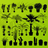 Exotic plant, bush, palm tree and cactus detailed illustration — Stockvector