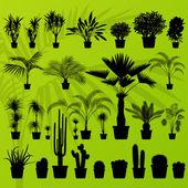 Exotiska växter, bush, palm och cactus detaljerad illustration — Stockvektor