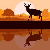 Hirsch in wilder natur wald landschaft hintergrund vektor — Stockvektor
