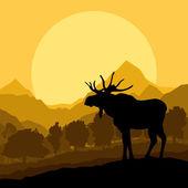 Ciervos en vector de fondo de paisaje de naturaleza salvaje bosque — Vector de stock
