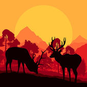 Deer in wild nature forest landscape background vector — Stock Vector